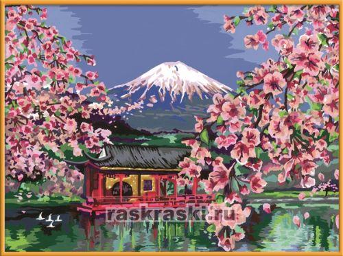 Раскраски по номерам сакура